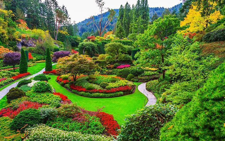 تصاویری بسیار زیبا از باغ های بوچارت در ونکوور!