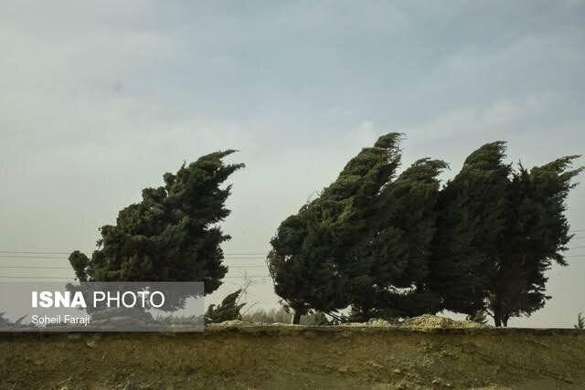 وقوع 9 حادثه در مشهد در پی وزش باد شدید