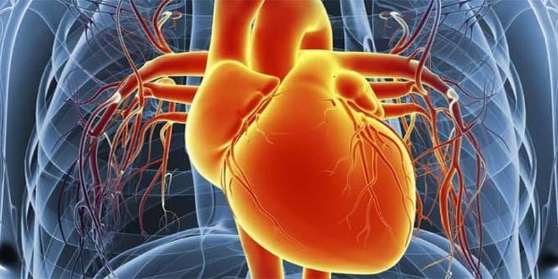 خطر دو تا چهار برابری ابتلا به مسائل قلبی و عروقی در بیماران دیابتی