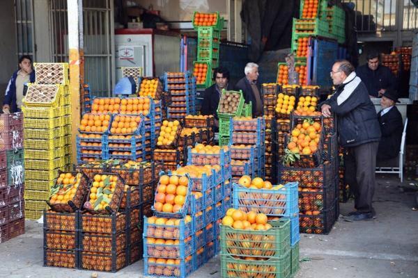 خبرنگاران میوه شب عید استان کرمانشاه توسط 155عامل فروشندگی توزیع می گردد