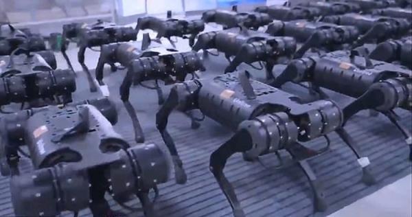 (ویدئو) ترس بسیاری از افراد با دیدن حرکت گروهی ربات ها
