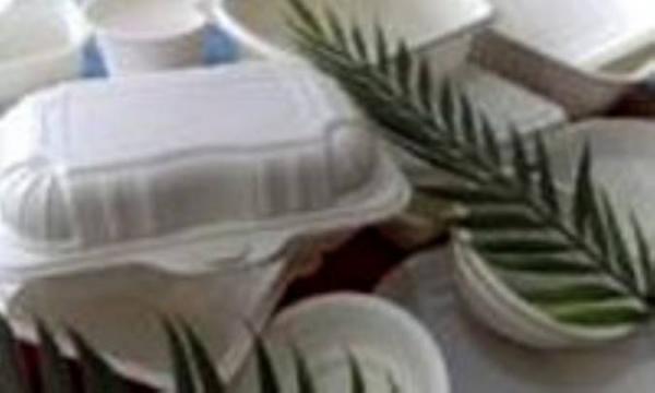 مزایای استفاده از ظروف یک بارمصرف گیاهی